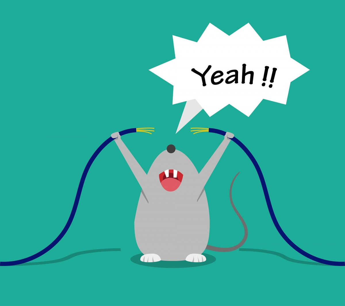 Are Rodent Pests Chewing Through Your Electrical Wiring?